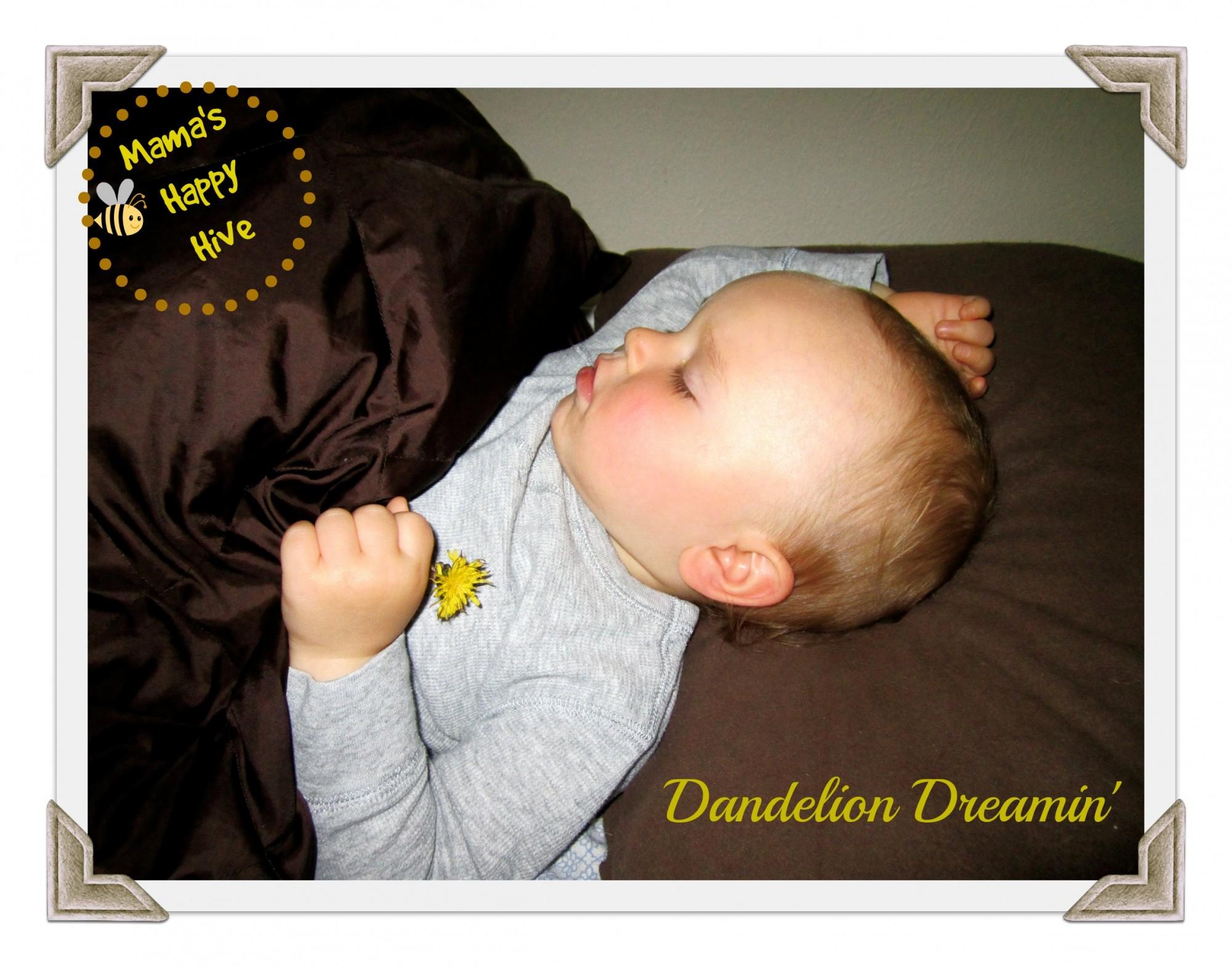 Dandelion Dreamin'