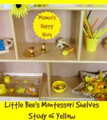 Montessori Toddler Study of Yellow