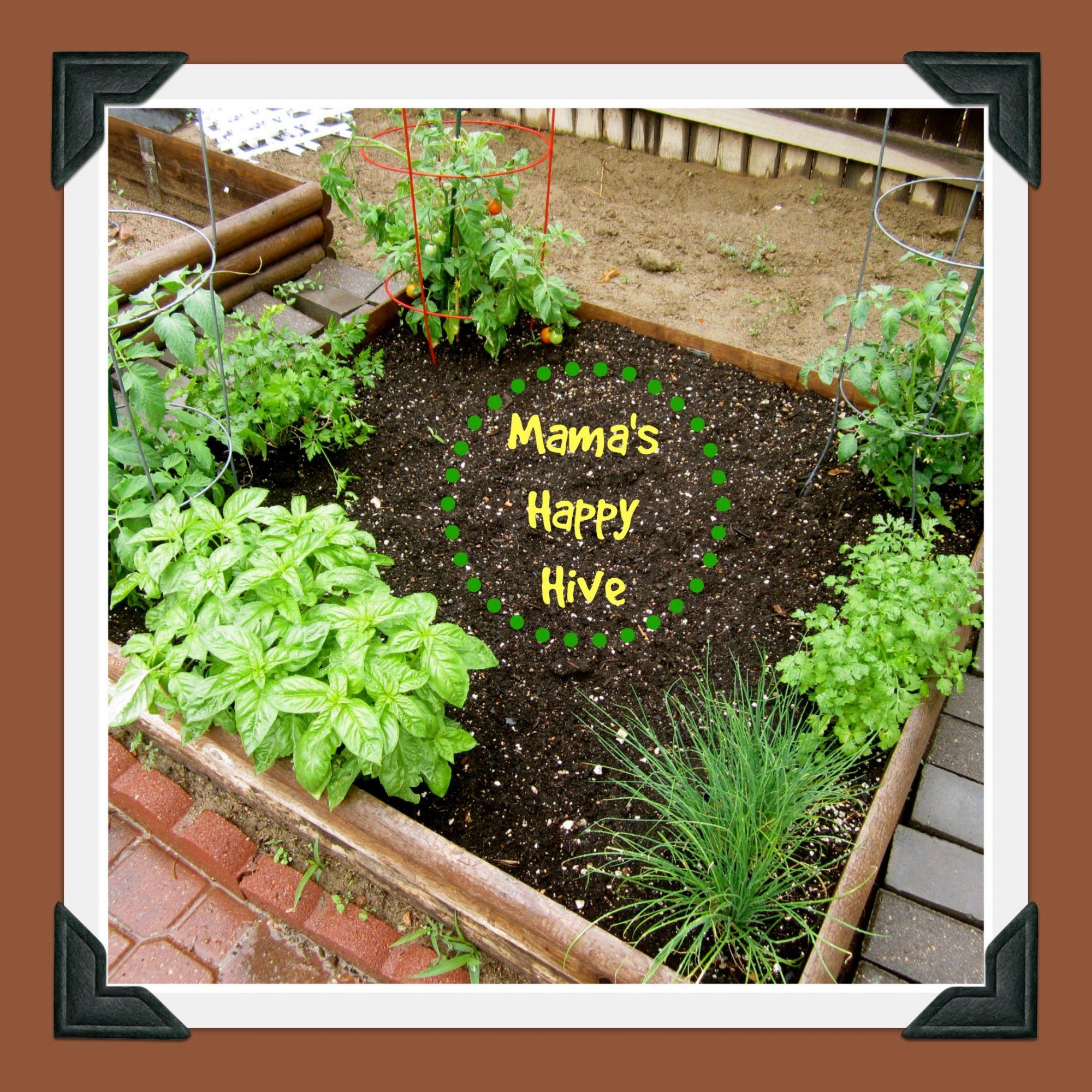 Our Garden - www.mamashappyhive.com.jpg