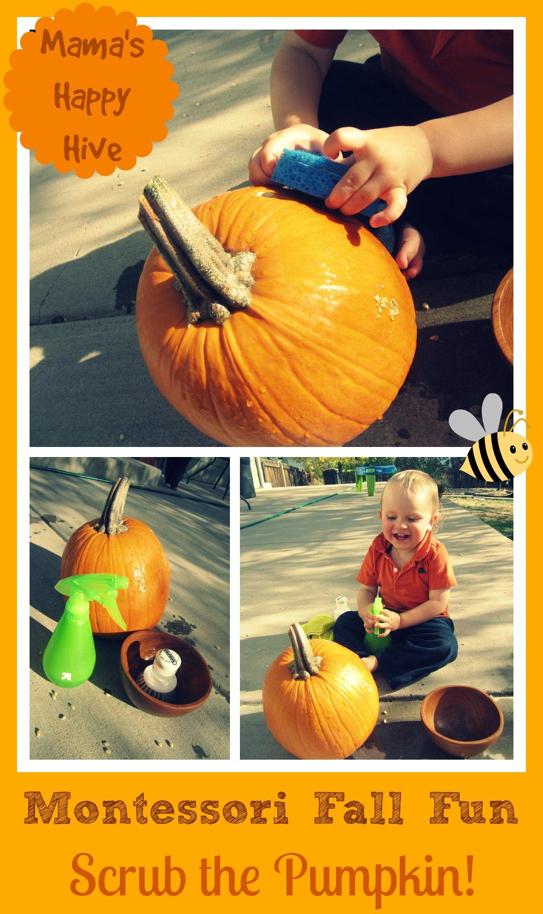 Montessori Fall Fun – Scrub the Pumpkin
