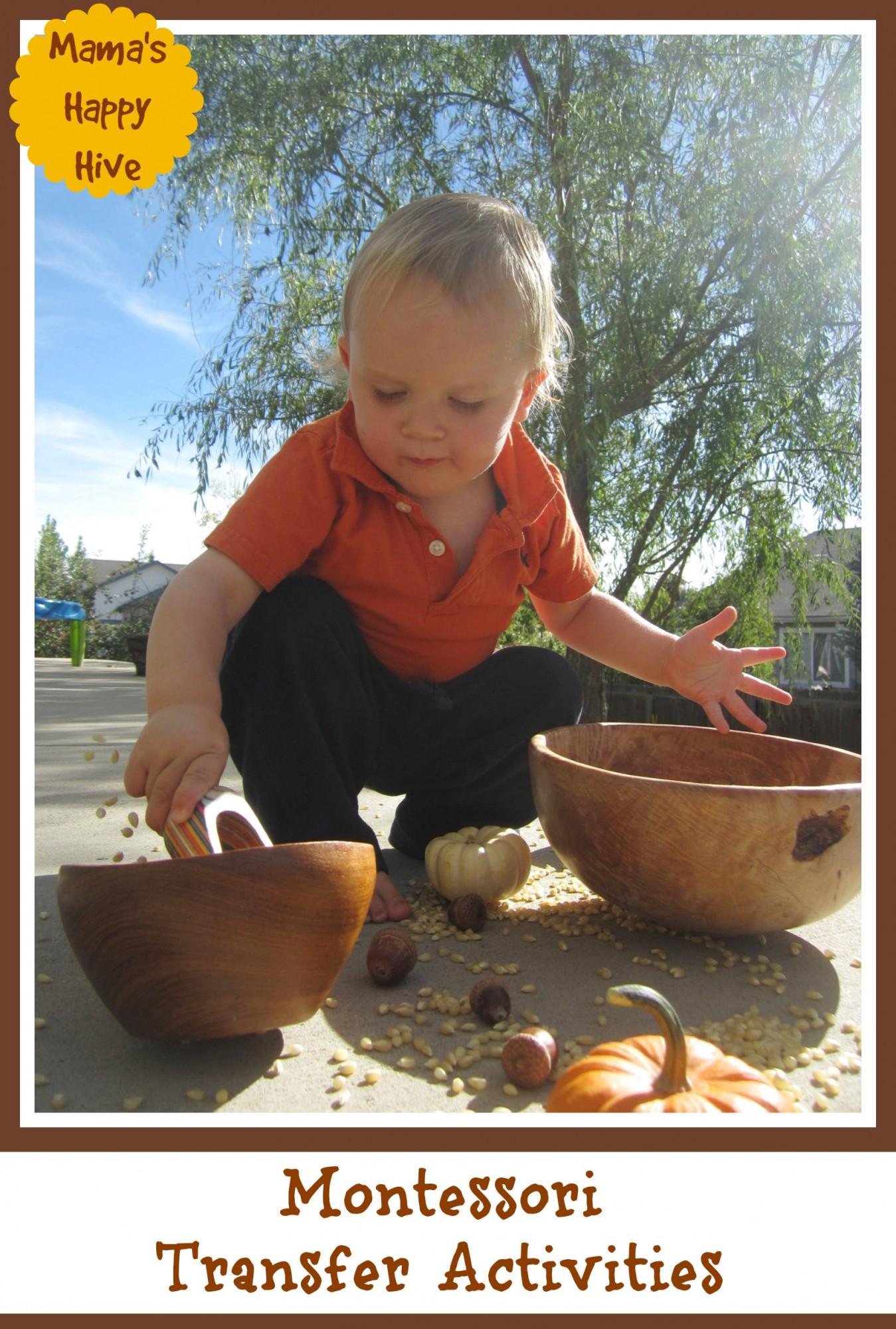Montessori Transfer Activities - www.mamashappyhive.com