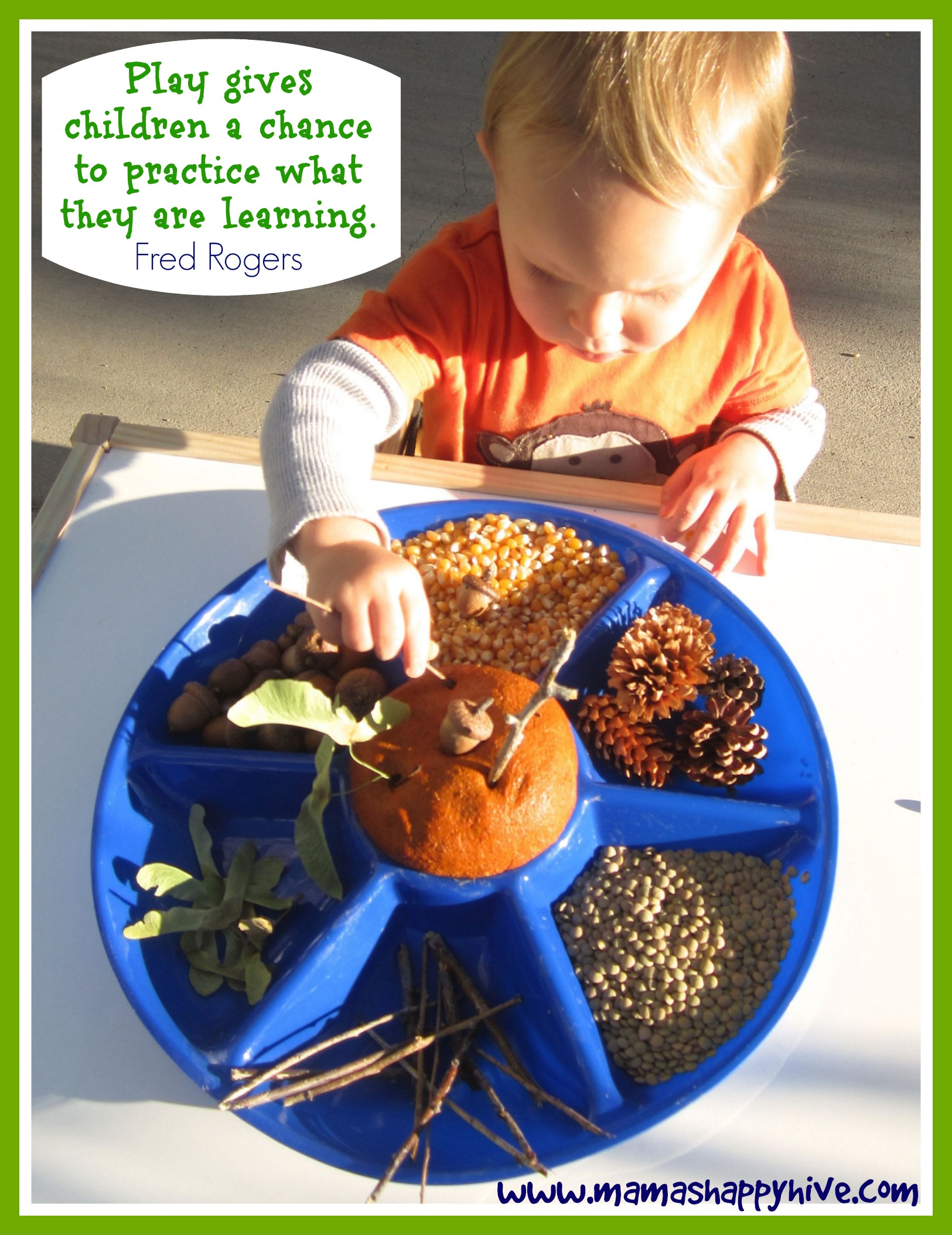 Pumpkin Play Dough Provocation