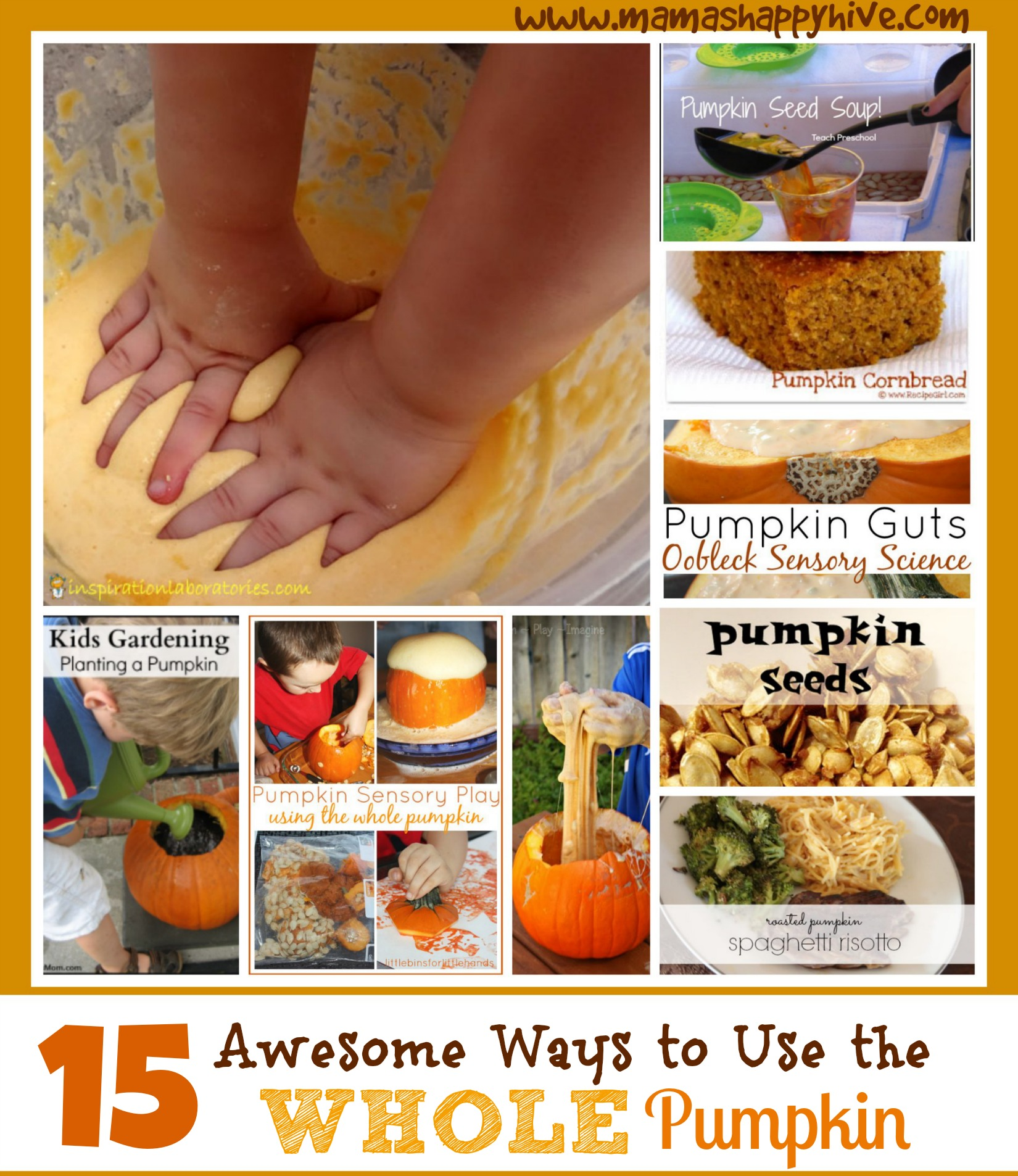 Pumpkin Sensory Play: 15 Ways to Use the Whole Pumpkin