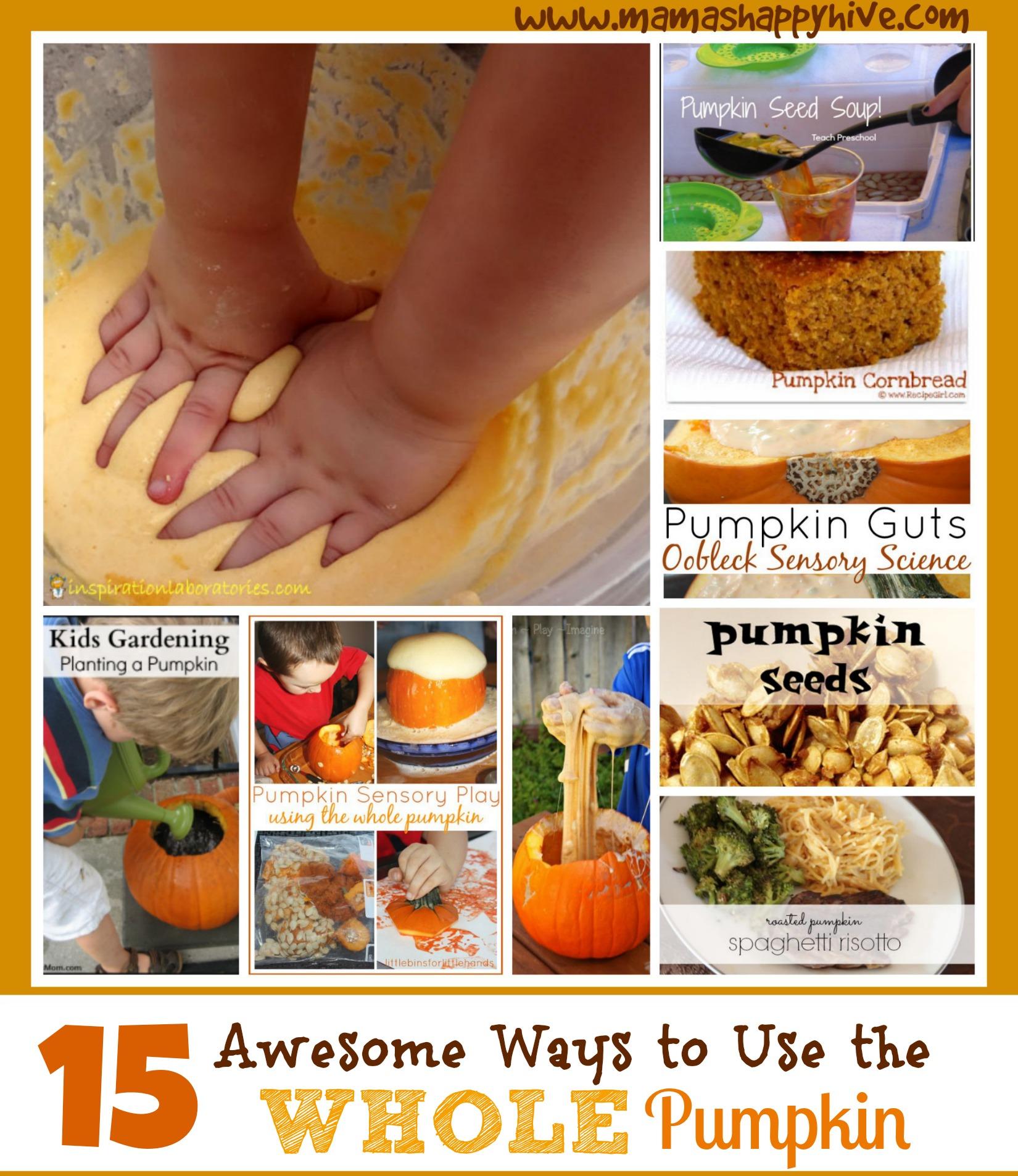 Pumpkin Sensory Play: 15 Ways to Use the Whole Pumpkin