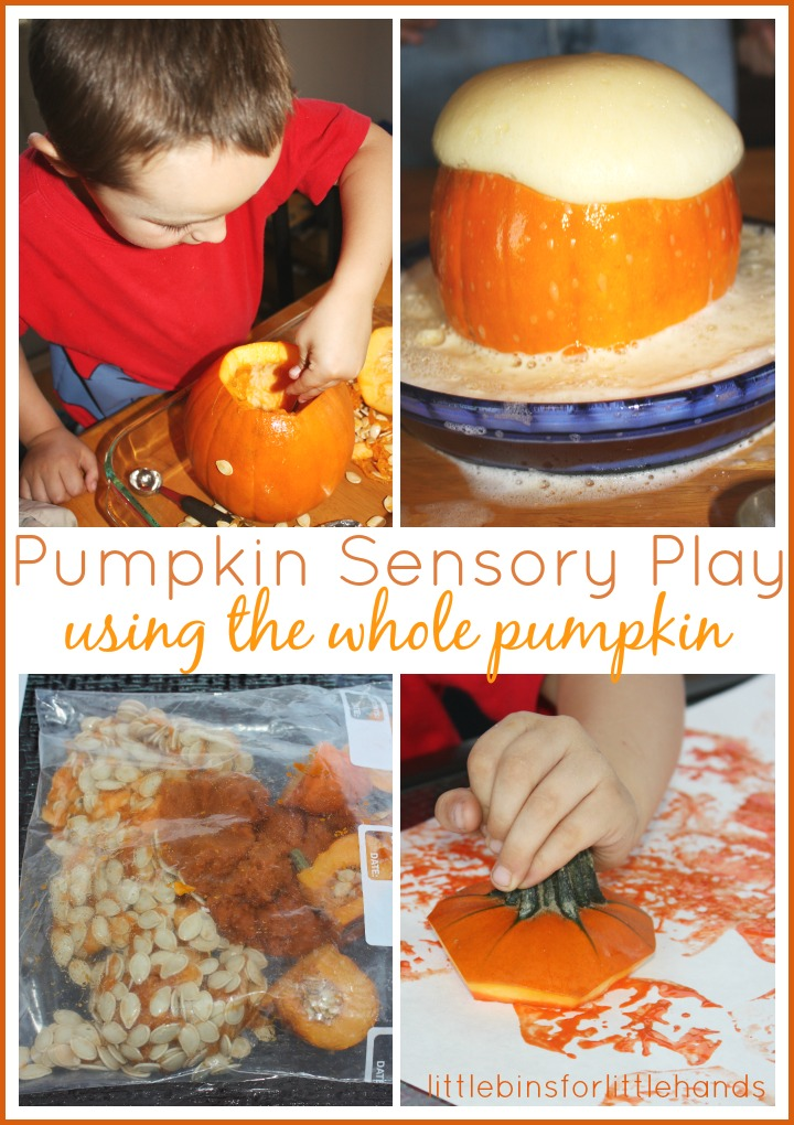 whole-pumpkin-sensory-play-early-learning-fall-activities