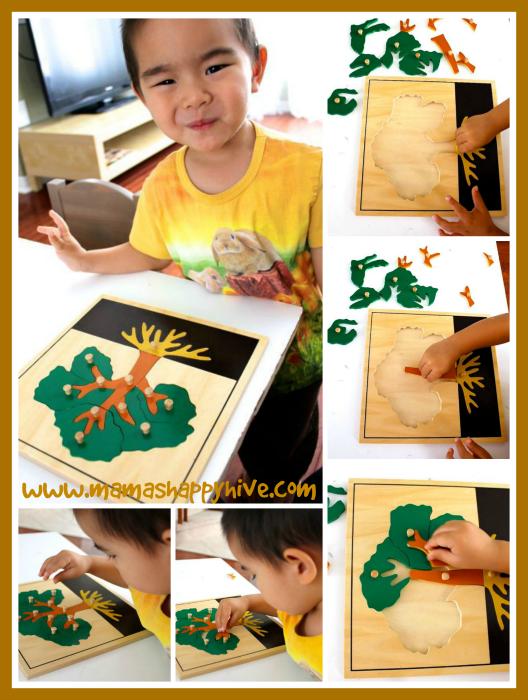 Tree Puzzle - www.mamashappyhive.com