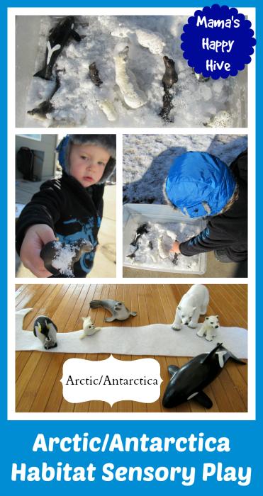 ArcticAntarctica Habitat Sensory Play - www.mamashappyhive.com