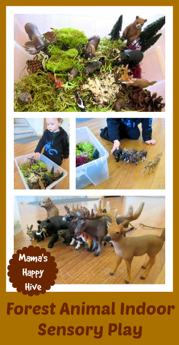 Forest Animal Indoor Sensory Play - www.mamashappyhive.com