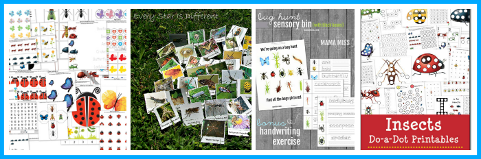 Insect Printables Roundup