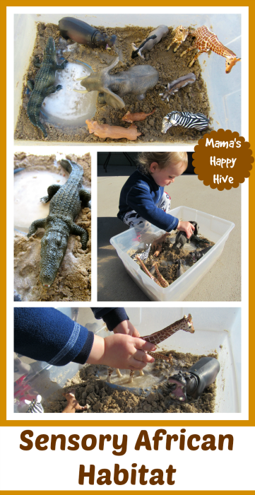 The 12 Months of Montessori Learning theme this week is geography. Come visit to learn how to create 3 Continental Montessori Inspired Sensory Habitats. - www.mamashappyhive.com