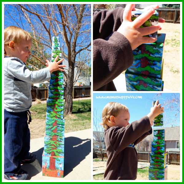 Tallest Tree Stacking Boxes for Hands On Learning