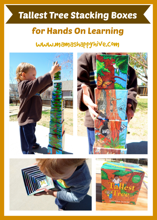 These beautiful tallest tree stacking boxes for hands on learning, provide artistic inspiration and education about the mighty Redwood Tree. - www.mamashappyhive.com
