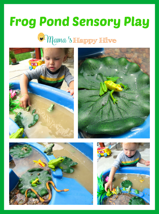 5 Montessori Inspired Frog Activities