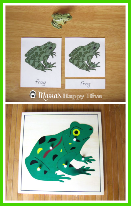 Frog Puzzle - www.mamashappyhive.com