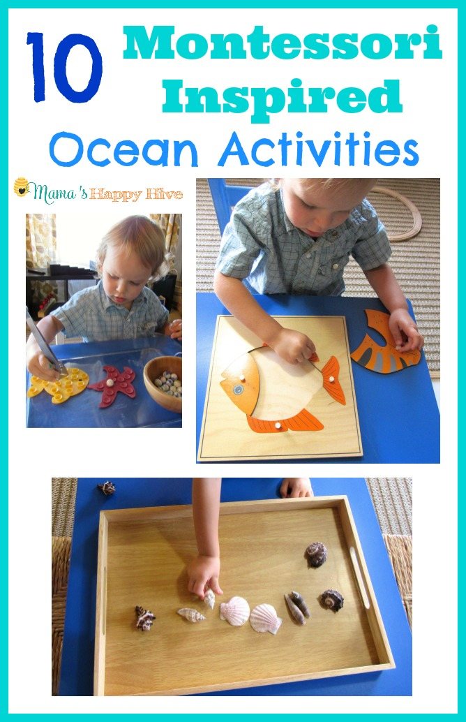 This collection of Montessori Inspired ocean activities includes painting and washing seashells, fine motor work, a Montessori fish puzzle, a pre-reading letter S mystery bag, ocean matching work, counting work, and sensory play for toddlers/preschoolers. - www.mamashappyhive.com