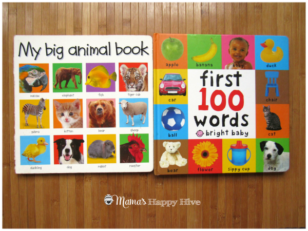 Bright Picture Books - www.mamashappyhive.com