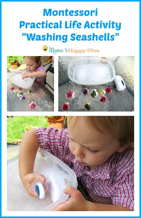 Montessori Washing Seashells - www.mamashappyhive.com