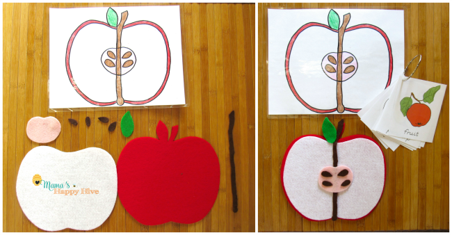 Apple Parts and Cards - www.mamashappyhive.com