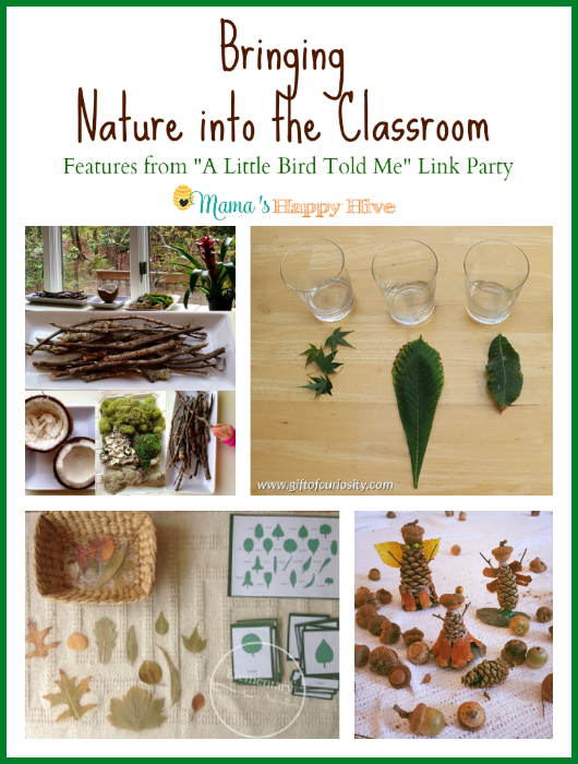 "This is a lovely collection of activities for bringing nature into the classroom. Also, ""A Little Bird Told Me"" Wednesday link party! Bloggers, come party! - www.mamashappyhive.com"