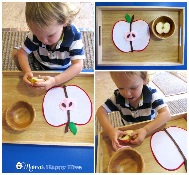 Examining a Real Apple - www.mamashappyhive.com