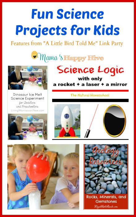 Fun Science Projects for Kids