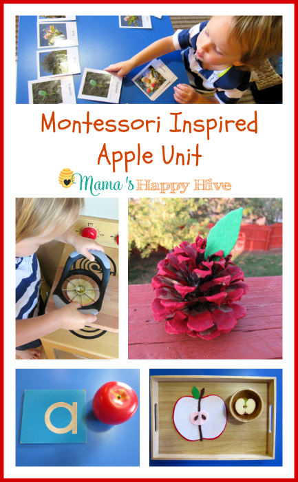 Montessori Inspired Apple Unit