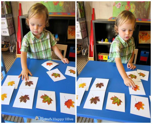 Leaf Matching - www.mamashappyhive.com