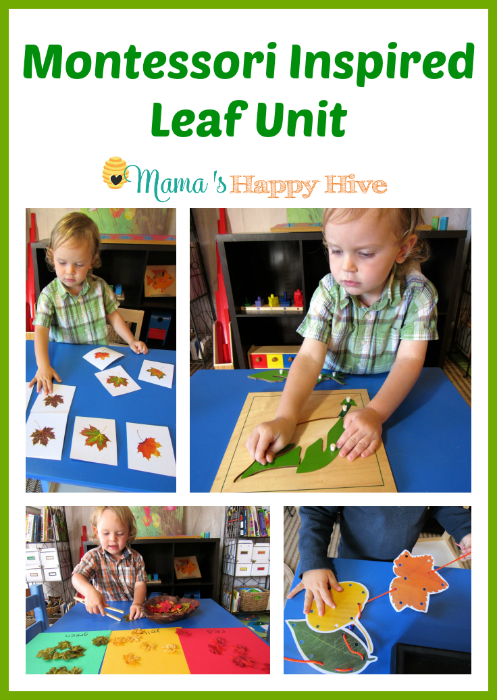 A colorful collection of Montessori inspired leaf unit activities for toddlers and preschoolers to enjoy this fall. - www.mamashappyhive.com