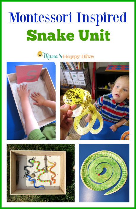 Montessori Inspired Snake Unit