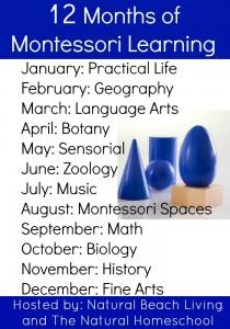 12 Months of Montessori