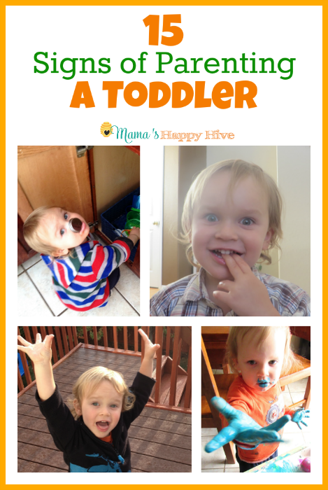 15 Signs of Parenting a Toddler - www.mamashappyhive.com