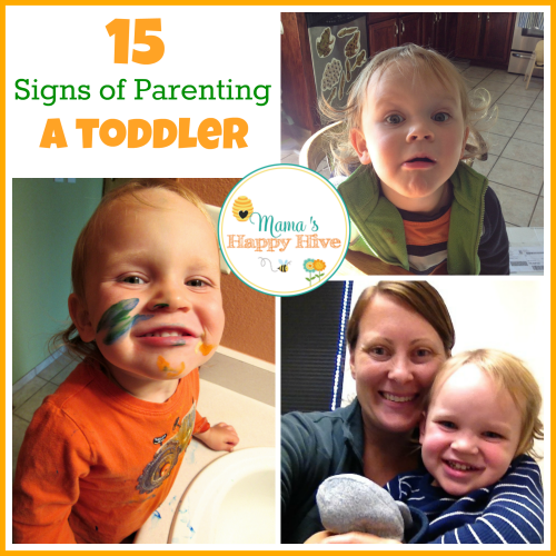 15 Signs of Parenting a Toddler
