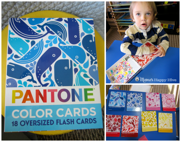 Pantone Color Cards - www.mamashappyhive.com