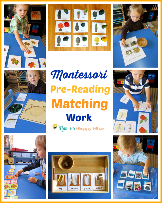 Montessori Pre-Reading Activities: Matching Work - www.mamashappyhive.com