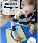 Montessori Inspired Penguin Unit
