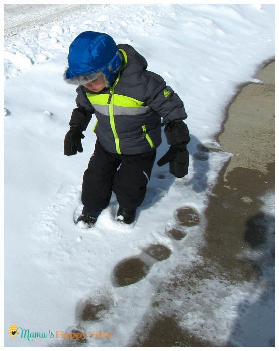 Several sensory activities for learning about winter forest animals and footprints. The activities include muddy footprints in the spring, snow dough footprints, and exploring footprints outdoors. - www.mamashappyhive.com