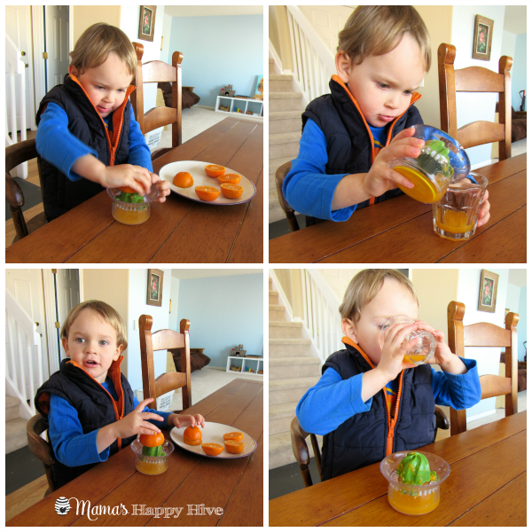 Orange Juice - www.mamashappyhive.com