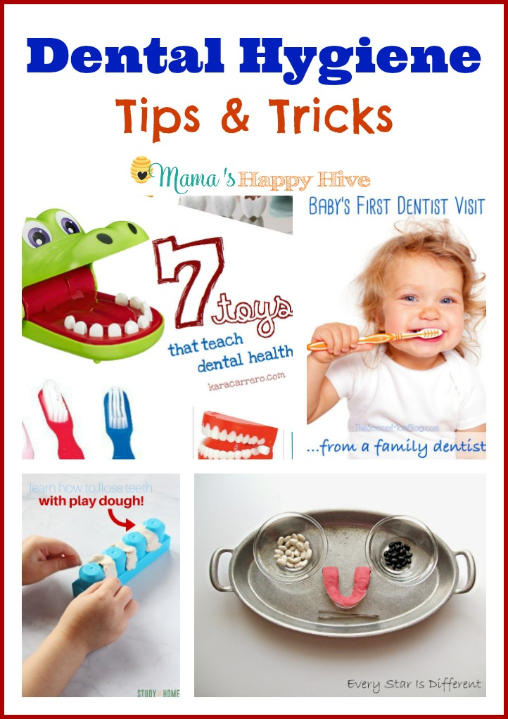 These dental hygiene tips and tricks include ways to encourage a toddler or preschooler to brush and floss their teeth thoroughly without a fight. Also, there is a collection of dental health activities from the Kid Blogger Network. - www.mamashappyhive.com