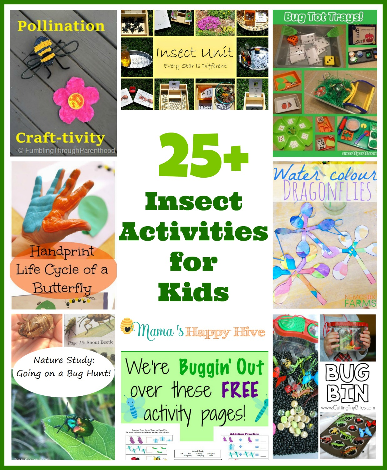 This collection of 25 insect activities for kids is full of fabulous ideas for studying bugs. There are activities for bee pollination, an entire insect unit with free printables, bug tot trays, life-cycle of a butterfly, water color dragonflies, outdoor nature hunt, free bug activity page printables, sensory bug bin, butterfly printables, and hands-on learning about bees. - www.mamashappyhive.com