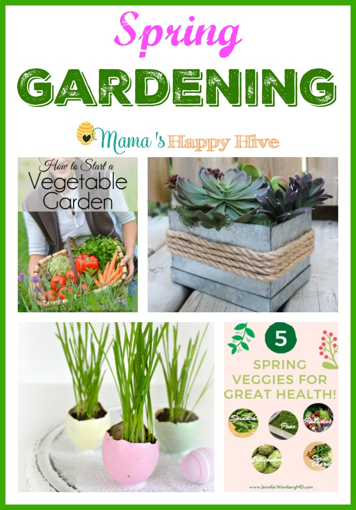 Do you need ideas for Spring Gardening with your kids? This post includes how to start a vegetable garden, create a beautiful succulent centerpiece, plant wheatgrass in pastel Easter egg shells, enjoy 5 spring veggies for great health, and how to plan a garden for kids. - www.mamashappyhive.com