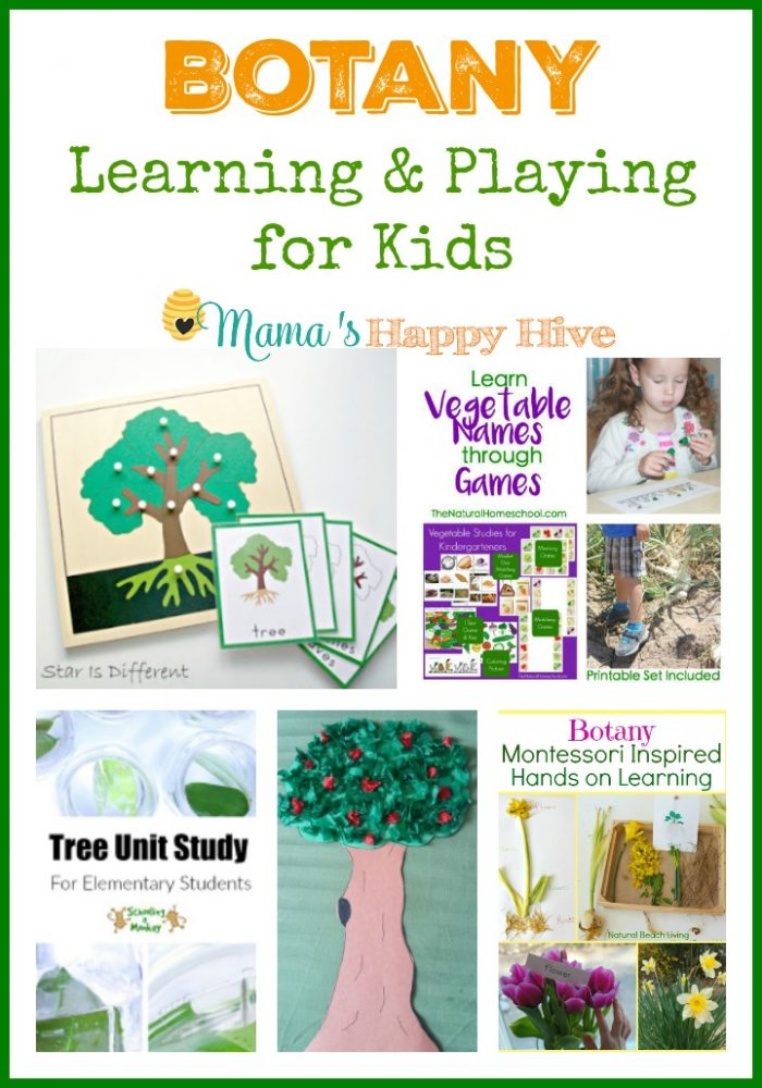 383 Best Nature Study Activities for Kids images | Nature ...