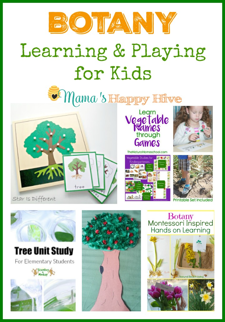 This collection of botany learning and playing for kids activities celebrates the wonder of living plants - trees, vegetables, and flowers. - www.mamashappyhive.com