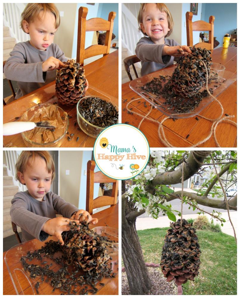 Bird Feeder - www.mamashappyhive.com