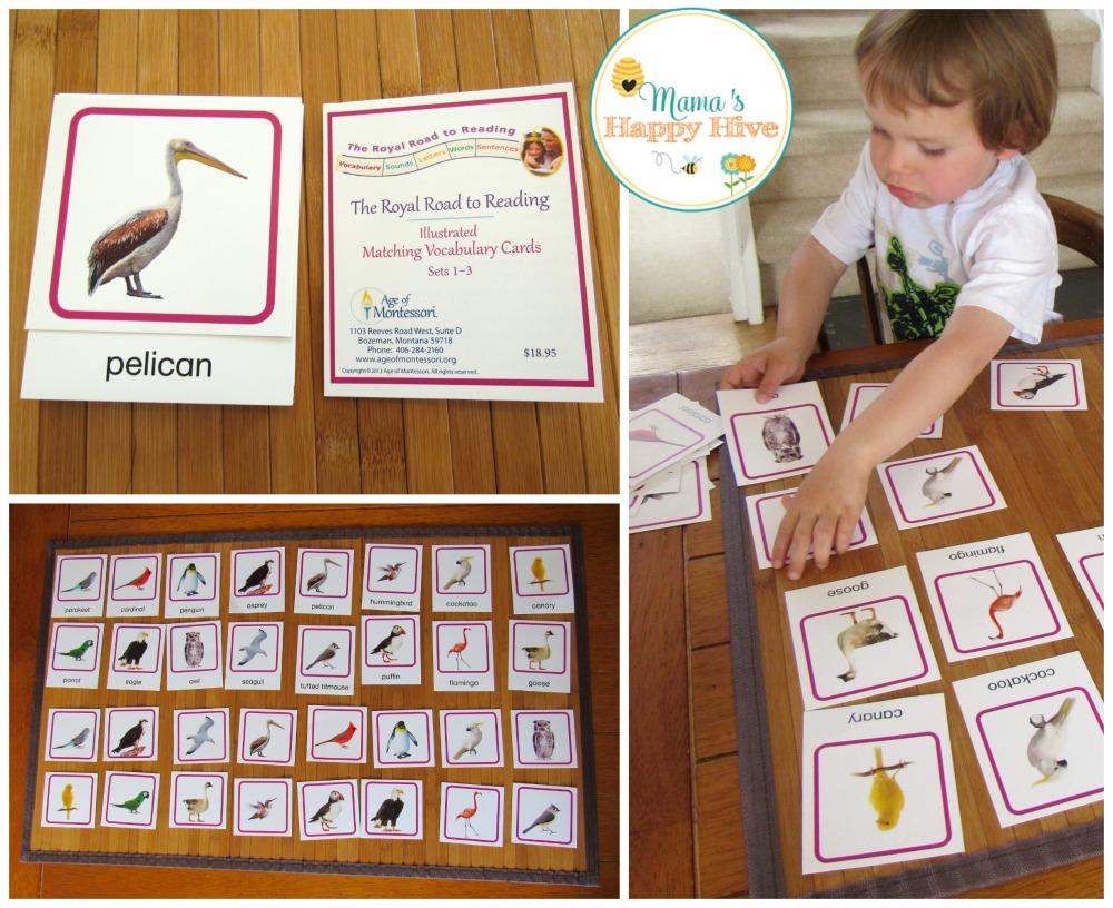 Bird Matching - www.mamashappyhive.com