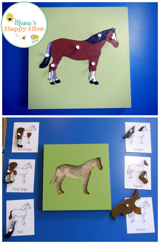 Horse Puzzle - www.mamashappyhive.com