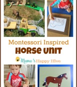 Montessori Inspired Horse Unit