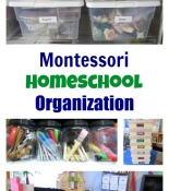 Montessori Homeschool Organization