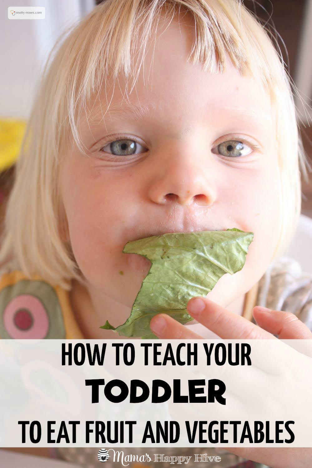 Life with toddlers is amazingly exciting. It's a fantastic age of exploration and learning. But it can also be hugely frustrating for both parents and kids. Every mundane task can take hours and mealtimes can become a battle field. Read more to learn how to teach your toddler to eat fruit and vegetables! - www.mamashappyhive.com