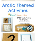 Arctic Themed Activities