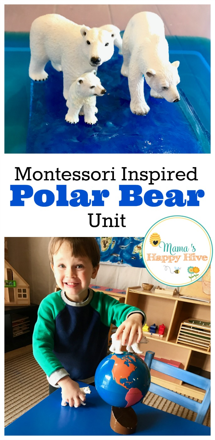 This Montessori Inspired Polar Bear Unit includes nomenclature cards, writing activities, matching work, food chain, art, and our favorite winter books. - www.mamashappyhive.com